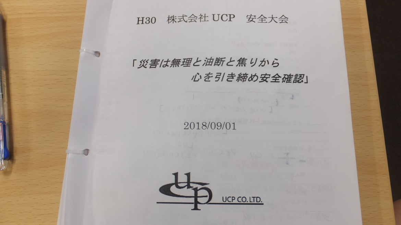 DSCF0733